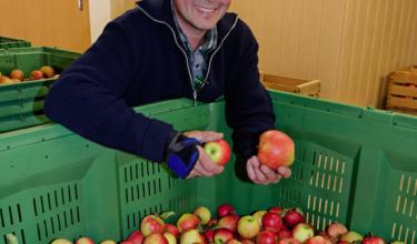 Neue Obstsorten für die Brennerei